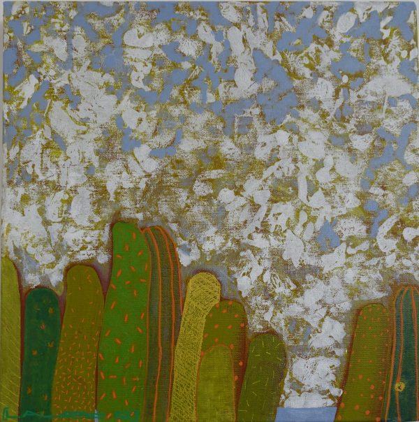 format carré paysage de cactées